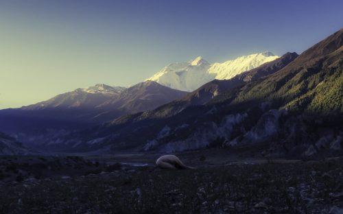 Manang Balasama, Shape Of Peace,  Népal,  Annapurna,  (2016),  60x40cm